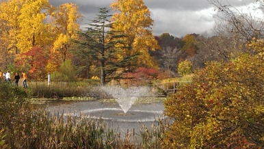 Horizontal photo. Fall foliage, Holden Arboretum, Ohio. Orange, red, golden trees. Tall fountain sraying water in pond.
