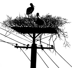 Black silhouette of large bird's nest atop telephone wires.