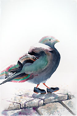 Painting of a bird with colorful feathers and preposterous clunky shoes on her feet.