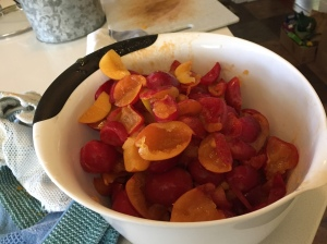 The plums are ready to be cooked and seasoned.