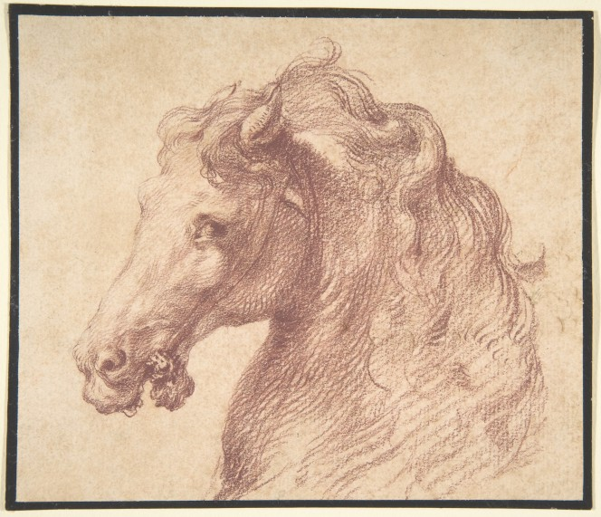 head of horse- Italian drawing- Met collection.jpg